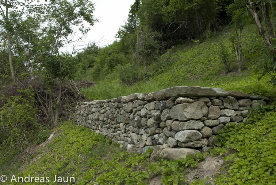 Trockenmauer Mammern 2006.jpg